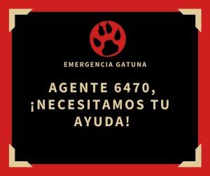 6bfaf082-cf94-4069-a337-0ad5174be6c5